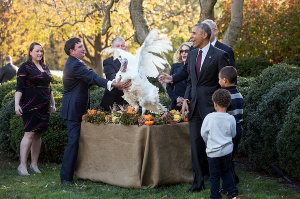 President Barack Obama and nephews Austin and Aaron Robinson watch National Thanksgiving Turkey Tater flap during the pardon of the National Thanksgiving Turkey ceremony in the Rose Garden of the White House, Nov. 23, 2016. (Official White House Photo by Chuck Kennedy)